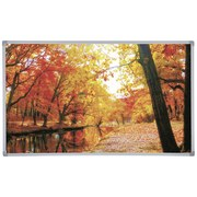 Infrarot Heizung 600 W Forest Fall 100x60 cm - Multicolor, Basics, Metall (100/60/2,2cm)