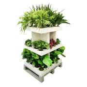 Kunstpflanze 111042mb-00 - Grün, Natur, Kunststoff (60cm)