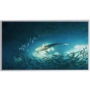Infrarot-Heizpaneel 720W Shark - Weiß, Basics, Metall (119,5/59,5/1,6cm)