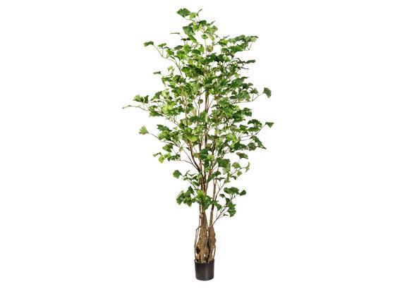 Umelá Rastlina Ginkobaum I - hnedá/zelená, plast (155cm)