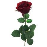 Rose Langstiel Rot - Rot/Grün, KONVENTIONELL, Kunststoff/Textil (69cm)