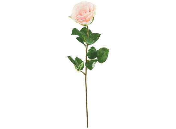 Rostlina Umělá Alfred - růžová/zelená, umělá hmota (69cm) - Mömax modern living