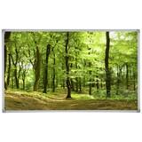 Infrarot Heizung 600 W Forest Summer 100x60 cm - Multicolor, Basics, Metall (100/60/2,2cm)