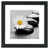 Bild Stones & Beauty II - Gelb/Schwarz, MODERN, Papier/Holzwerkstoff (34/34/1,9cm)
