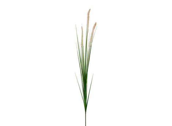 Rostlina Umělá Penisetumgras - krémová/zelená, Basics, umělá hmota (92cm)