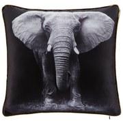 Zierkissen Animal - Schwarz/Weiß, MODERN, Textil (40/40cm) - Luca Bessoni