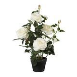 Kunstpflanze Rosenbusch H: 68 cm Weiß - Weiß/Grün, Trend, Kunststoff (68cm)