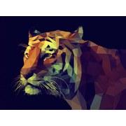 Keilrahmenbild Graphic Tiger - Gelb/Rot, MODERN, Holzwerkstoff (84/116/2,4cm)