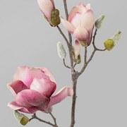 Dekozweig Magnolie L: 103 cm Altrosa - Altrosa/Braun, Trend, Kunststoff (103cm)