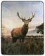 Kuscheldecke Hirsch - Multicolor, LIFESTYLE, Textil (130/160cm)