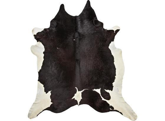 Kůže Hovězí Christoph -top- - černá/hnědá, Moderní, přírodní materiály - Mömax modern living