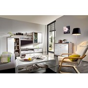 Obývací Stěna Cancan 1 - barva stříbrného dubu, Moderní, dřevěný materiál (290/189/48cm)