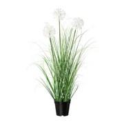 Kunstpflanze H: 78 cm Grün - Schwarz/Weiß, MODERN, Kunststoff (78cm) - MID.YOU