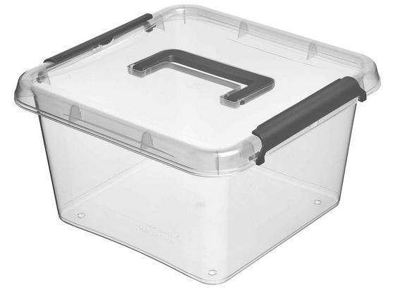 Aufbewahrungsbox Larissa - Transparent, Basics, Kunststoff (29/29/16,5cm) - Homezone