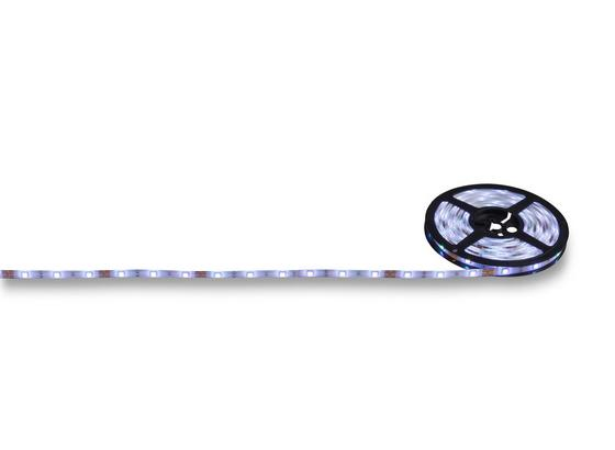 LED Leuchtband Steve - MODERN, Kunststoff (500cm) - Luca Bessoni