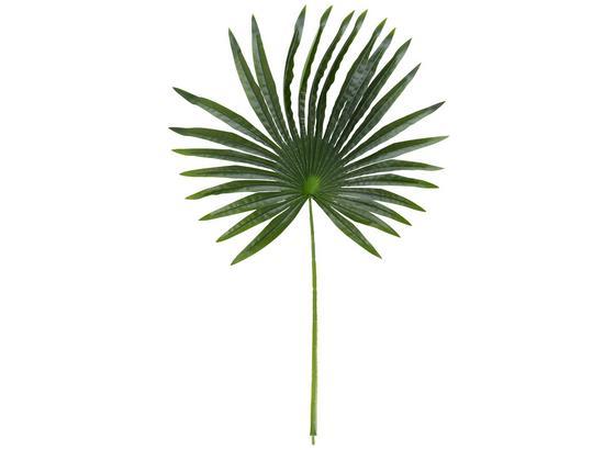 Umelá Rastlina Fächerpalmwedel I - zelená, Romantický / Vidiecky, plast (90 cmcm)