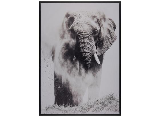 Obraz S Napínacím Rámem Liam - bílá/černá, kompozitní dřevo/textil (50/70cm) - Mömax modern living