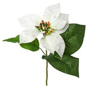 Kunstblume Poinsettie Burgi Weiss - Weiß/Grün, Basics, Kunststoff/Textil (35cm)