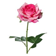 Rose H: 68 cm - Pink/Grün, Basics, Kunststoff (68cm)