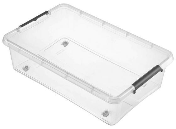 Box mit Deckel Lars 29 Liter - Transparent, Basics, Kunststoff (58/39/16cm)