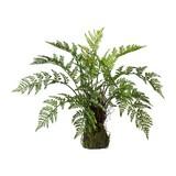 Kunstpflanze Farn H: 50 cm Grün - Braun/Grün, Trend, Kunststoff (60/50cm) - MID.YOU