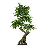 Kunstpflanze Ficus Benjamina H: 170 cm Grün - Braun/Grün, Trend, Kunststoff (80/170cm) - MID.YOU