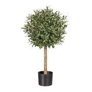 Kunstpflanze Olive H: 90 cm - Schwarz/Naturfarben, Trend, Kunststoff (90cm) - MID.YOU