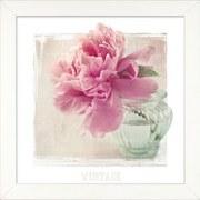 Bild Primrose - Rosa/Weiß, MODERN, Papier/Holzwerkstoff (34/34/1,9cm)