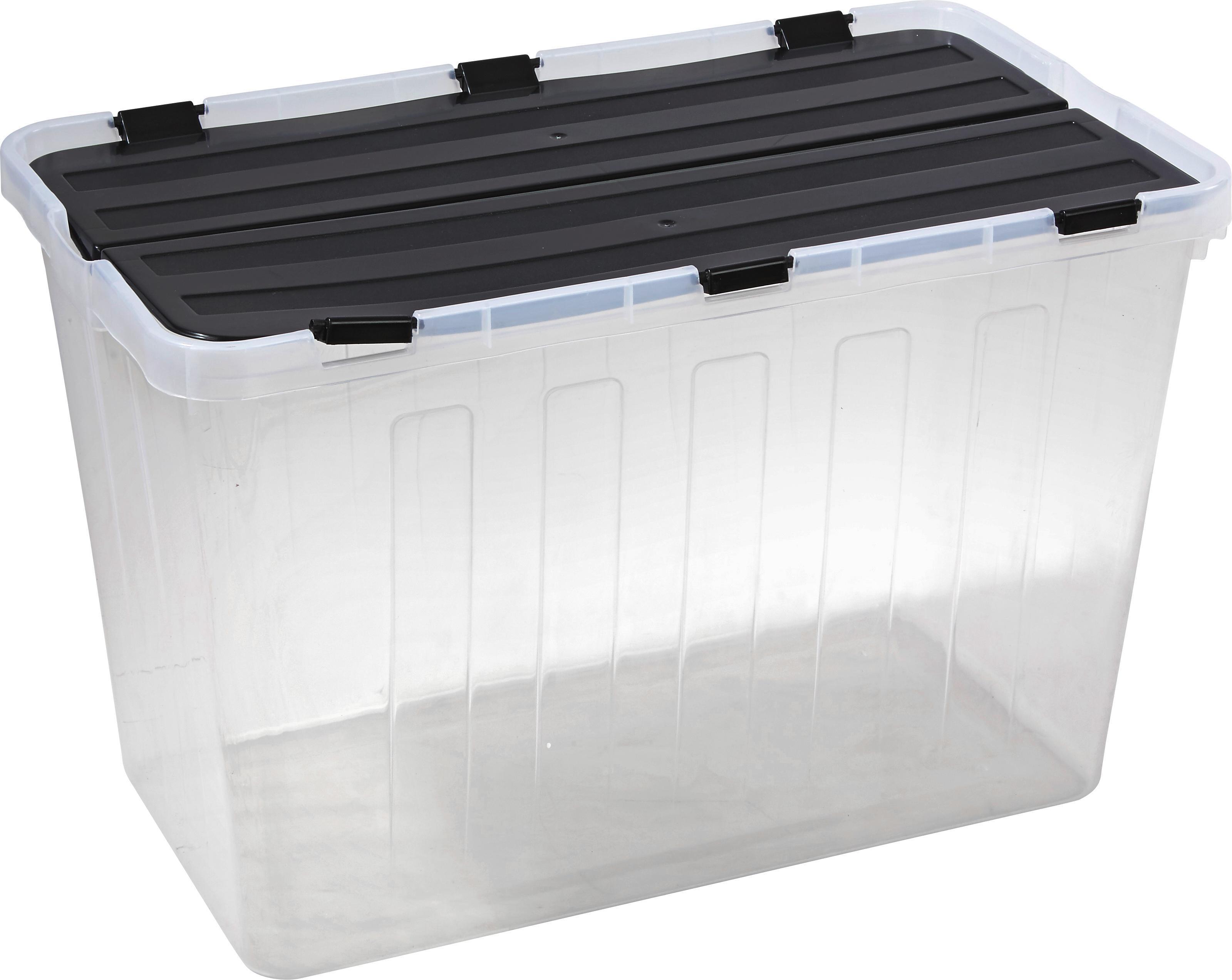 Box Mit Deckel Flipper 60 Liter Online Kaufen Möbelix