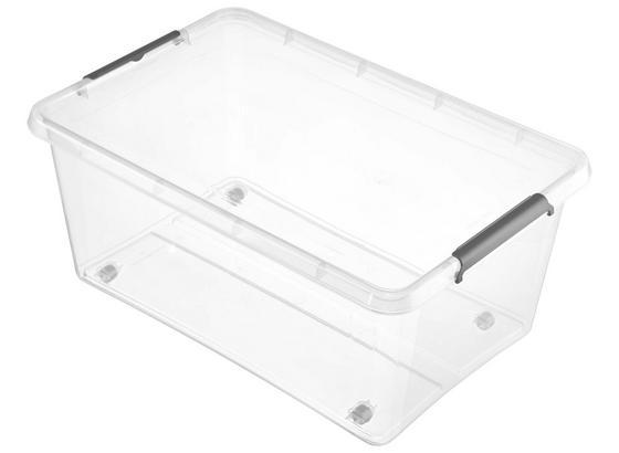 Box mit Deckel Lars 40 Liter - Transparent, Basics, Kunststoff (58/39/25cm) - Homezone