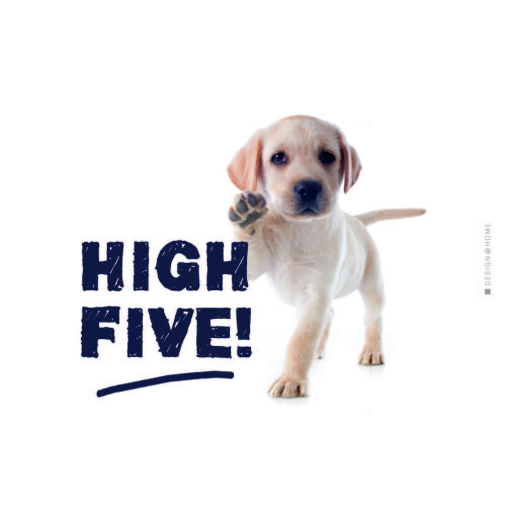 Prkénko Na Krájení High Five