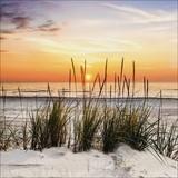 Keilrahmenbild Sonnenuntergang Am Strand - Gelb/Rot, MODERN, Holzwerkstoff (50/50/2cm)