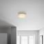 Led Stropná Lampa Ernie - biela, Konvenčný, kov/plast (28/8cm) - Mömax modern living