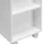 Regál Do Koupelny Bianco - bílá/tmavě šedá, Moderní, dřevo/umělá hmota (30,6/66/30cm) - Mömax modern living