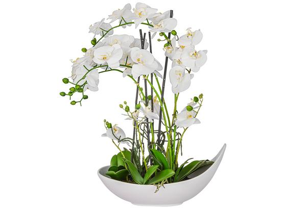 Rostlina Umělá Phalänopsis Ii - bílá (68 cm)