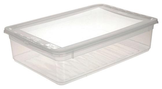 Box mit Deckel Bea, 8 Liter - Transparent, KONVENTIONELL, Kunststoff (39/26,5/10cm) - Homezone