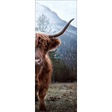 Keilrahmenbild Scottish Highland Cattle - Multicolor, Basics, Holzwerkstoff (27/77/2cm)