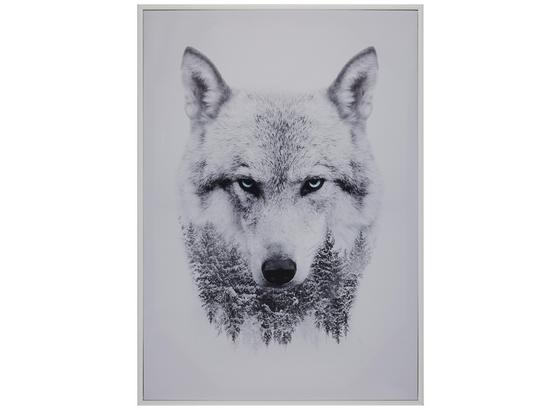 Obraz S Klínovým Rámom Liam - sivá/biela, kompozitné drevo/textil (50/70cm) - Mömax modern living