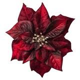 Dekoclip Poinsettie Burgi Rot - Bordeaux, Basics, Textil (17cm)