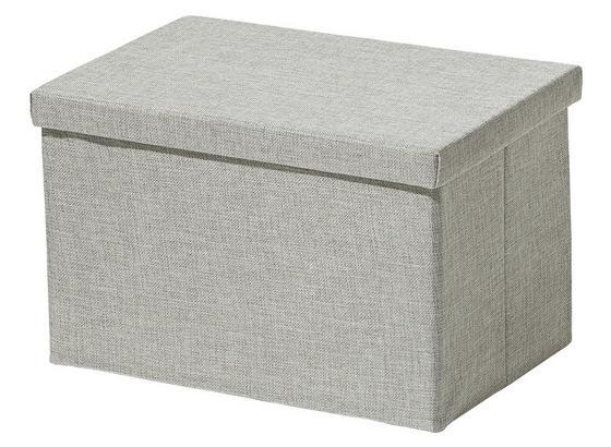 Skladací Box 'cindy' -ext- -top- - strieborná, Moderný, plast/papier (38/26/24cm) - Mömax modern living