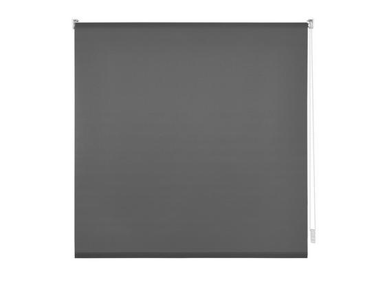 Upínací Roleta Daylight, 100/150cm, Šedá - šedá, Moderní, textil (100/150cm) - Modern Living