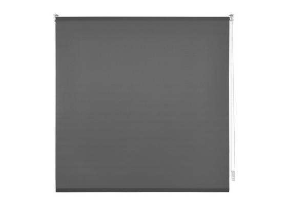 Upínací Roleta Daylight, 120/150cm, Šedá - šedá, Moderní, textil (120/150cm) - Modern Living