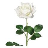 Rose H: 68 cm - Creme/Grün, Basics, Kunststoff (68cm)