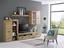 Obývacia Stena Sofia - farby dubu, Konvenčný, umelá hmota/kov (300/200,9/41cm) - Modern Living