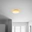 Led Stropná Lampa Ernie - biela, Konvenčný, kov/plast (35/9cm) - Mömax modern living