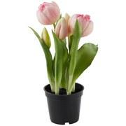 Květina Umělá Tulpen - růžová/zelená, Romantický / Rustikální, kov/umělá hmota (25cm)