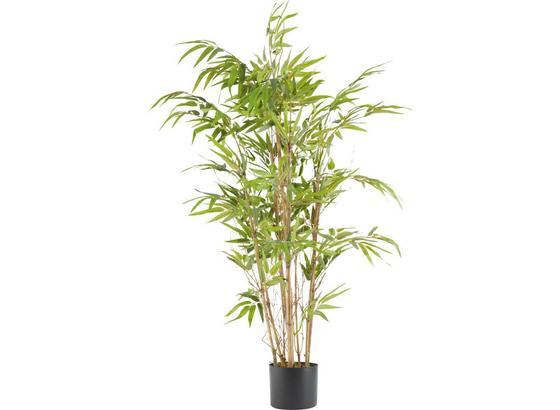 Umelá Rastlina Noah - hnedá/zelená, plast (120cm) - Mömax modern living